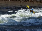 Watch the canoeists come & play in the Falls
