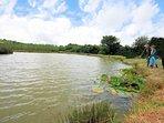 Well stocked fishing lake