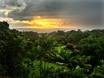 Breathtaking morning sunrise over the pacific and lush tropical gardens.
