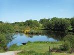 Lake grounds