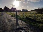 Lane to Tyddyn Adi Farm