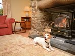 Pawfect for relaxing in front of the fire after a long walk across the moorland