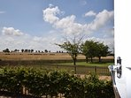 Views over open fields