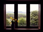 View from a bedroom window over the Brecon hills