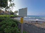 View Sea Turtles at Beach Preserve