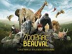 Fameux zoo de Beauval !