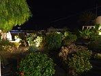 Nuestras luces en el increible jardín.