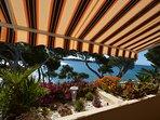 Nouveau : terrasse avec store banne motorisé
