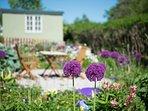 An uplifting garden