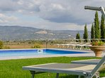 Sun loungers around the swimming pool