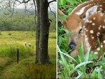 Wildlife refuge views.