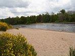 Deserted beach along the river