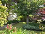 Pretty side garden