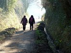 Take a walk or cycle on the Tarka Trail