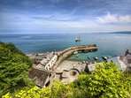 Nearby Clovelly known for its whitewashed cottages and winding cobbled street