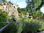 Pretty garden features