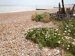 Walk onto the shingle beach
