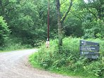 Entrance to the forest