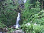 Visit Llanrhaeadr Waterfall during your stay