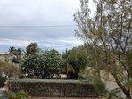Seashells garden from rear showing frangipani tree