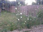 Jardín y columpios