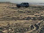 Being at the North End allows you to drive your 4x4 onto the sand or camp out for a fee.