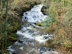 Follow the Fairy Falls trail a few hundred yards from the cottage