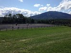 Our riding arena, which is 100x200, is available for guests who choose to bring their horses.