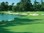 One of the many picturesque golf holes on Kiawah Island.