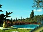 breath the fresh air, enjoy the sunshine, relax near the pool