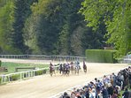 A day at the races in Pompadour is great fun! Only 6Euros too! Regular events throughout the summer