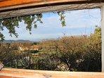 Kitchen window view in Spring
