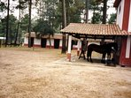 Stables & horse riding on site