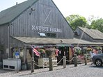 Nauset Farms is across the street with a butcher, gourmet coffee and sandwiches and beer and wine.