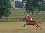 Polo in summer in the next door village of Kirtlington