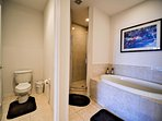 Private lavatory and walk-in shower in the master bathroom.