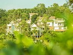 The Jackfruit Tree at hamlet has 08  twin bedroom villas, facing Chembra peak !