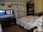 Second bedroom, firm double bed, 47 in TV on electric fireplace TV stand, corner shelf extra linen