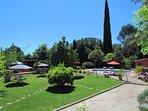 vue sur jardin et piscine