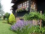 Oak Cottage Getaway in Northern Croatia