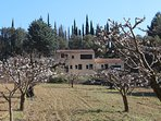 Cherry Orchard in Blossom in Front of the Villa