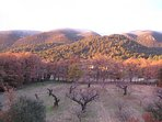 Fall Colours and Rare First Snow on the Luberon