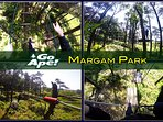 Go ape at Margam Park , go and swing through the tree tops ,