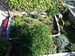 A1(5+1): garden