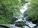 Torc Waterfall - Killarney