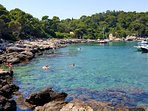 Escape the crowd! Go enjoy relaxing time on  Lokrum island, a 10- minute boat ride from Old Town