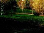 Large 2 acre landscaped garden