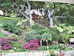 Landscaped property w/ playground