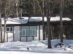 Дом в живописном месте в деревне Селихново на краю леса у берега реки Великая. 9км до Пушкинских Гор