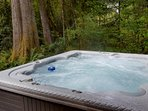 Lucky's Mountain Chalet-Hot tub
